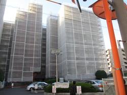 2012121211.JPGのサムネール画像