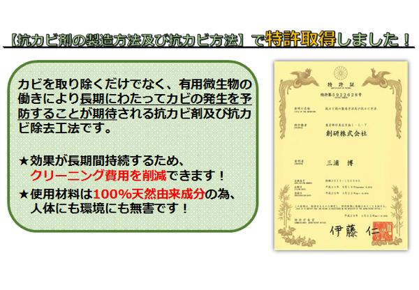 カビブログ用3.png