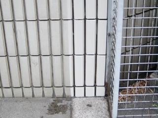国際東日本橋ビル 外壁タイル洗浄
