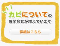 second_banner_kabi.jpg